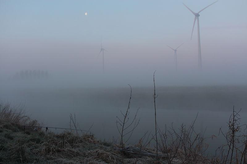 Een winterse ochtend aan de Leie...