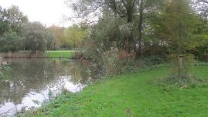 De Flevoparkvijver: door de bomen schemert het Nieuwe Diep